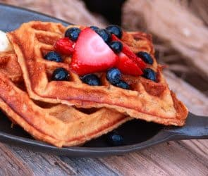 Honey Yogurt Pecan Waffles