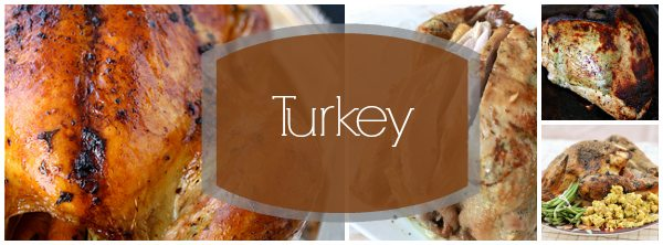 Turkey Header