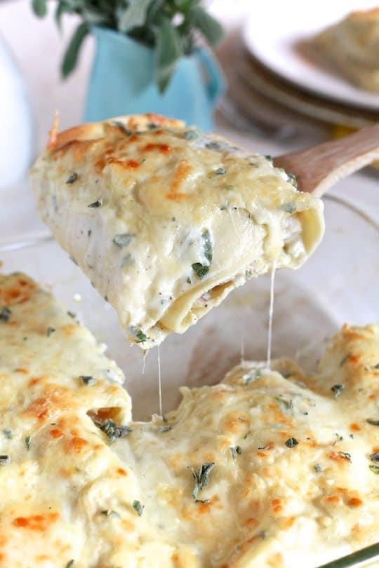 Butternut & Sage Lasagna Rolls