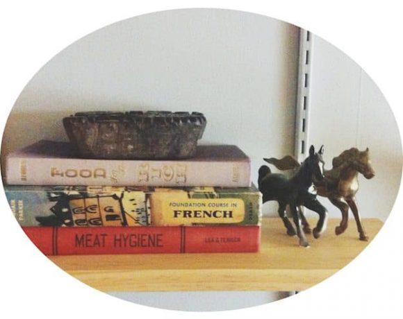Trending: Rocks, Copper, Horses