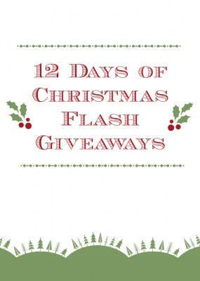 12 Days of Christmas Giveaways! | The Flavor Bible
