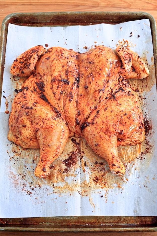 Harissa Spiced Whole Grilled Chicken | TheNoshery.com - @TheNoshery