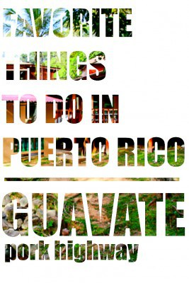 Thing to Do in Puerto Rico: Guavate