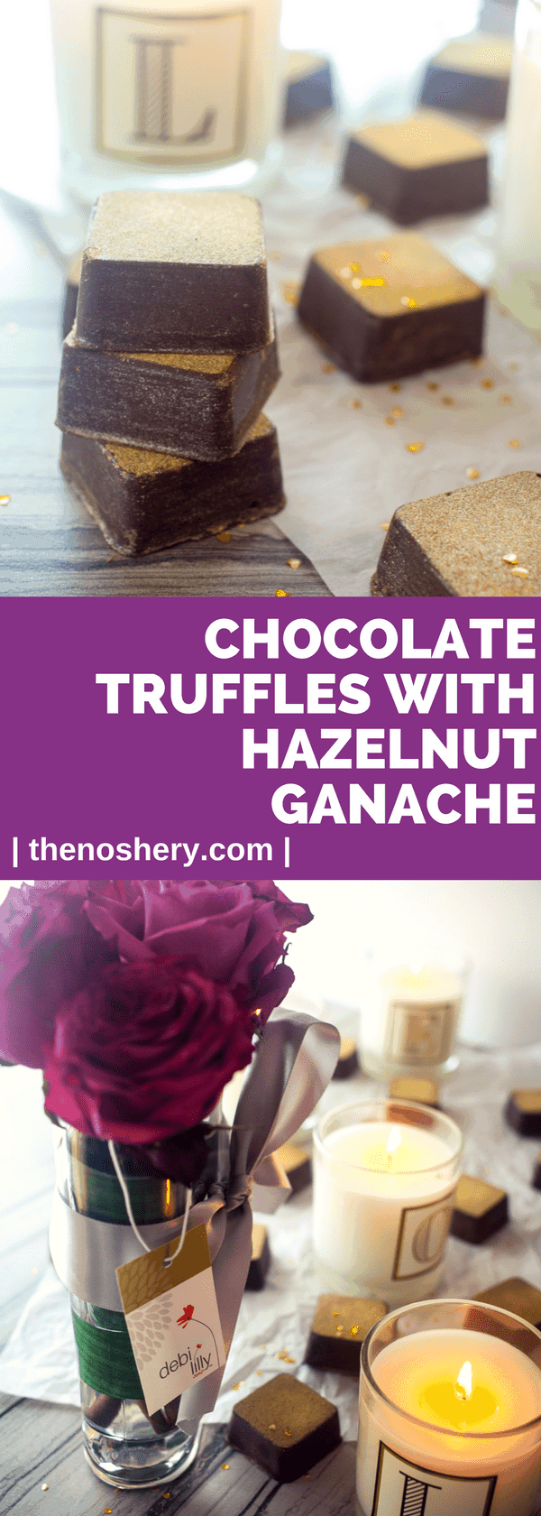 Chocolate Truffles with Hazelnut Ganache | Molded bittersweet chocolate truffles stuffed with a hazelnut liquor chocolate ganache. The perfect homemade gift for the one you love. | The Noshery