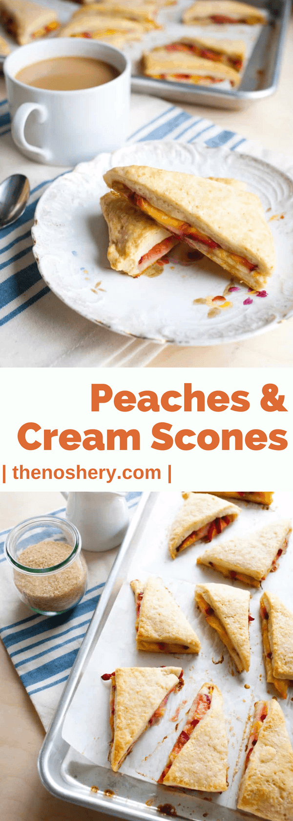 Peaches & Cream Scones | Tender crumbly cream scones stuff with sweet ripe peaches. The perfect start to a morning. | The Noshery